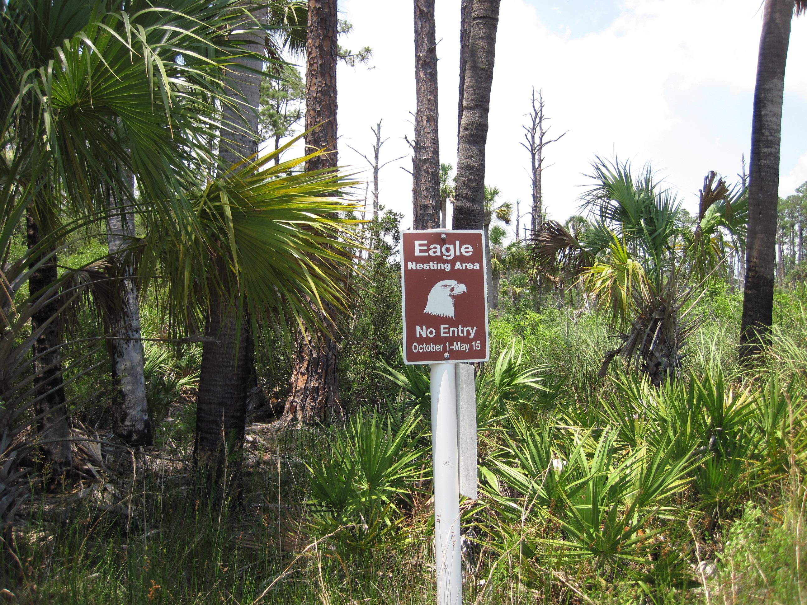 Kayaking at St. Vincent Island on Florida's Forgotten ...