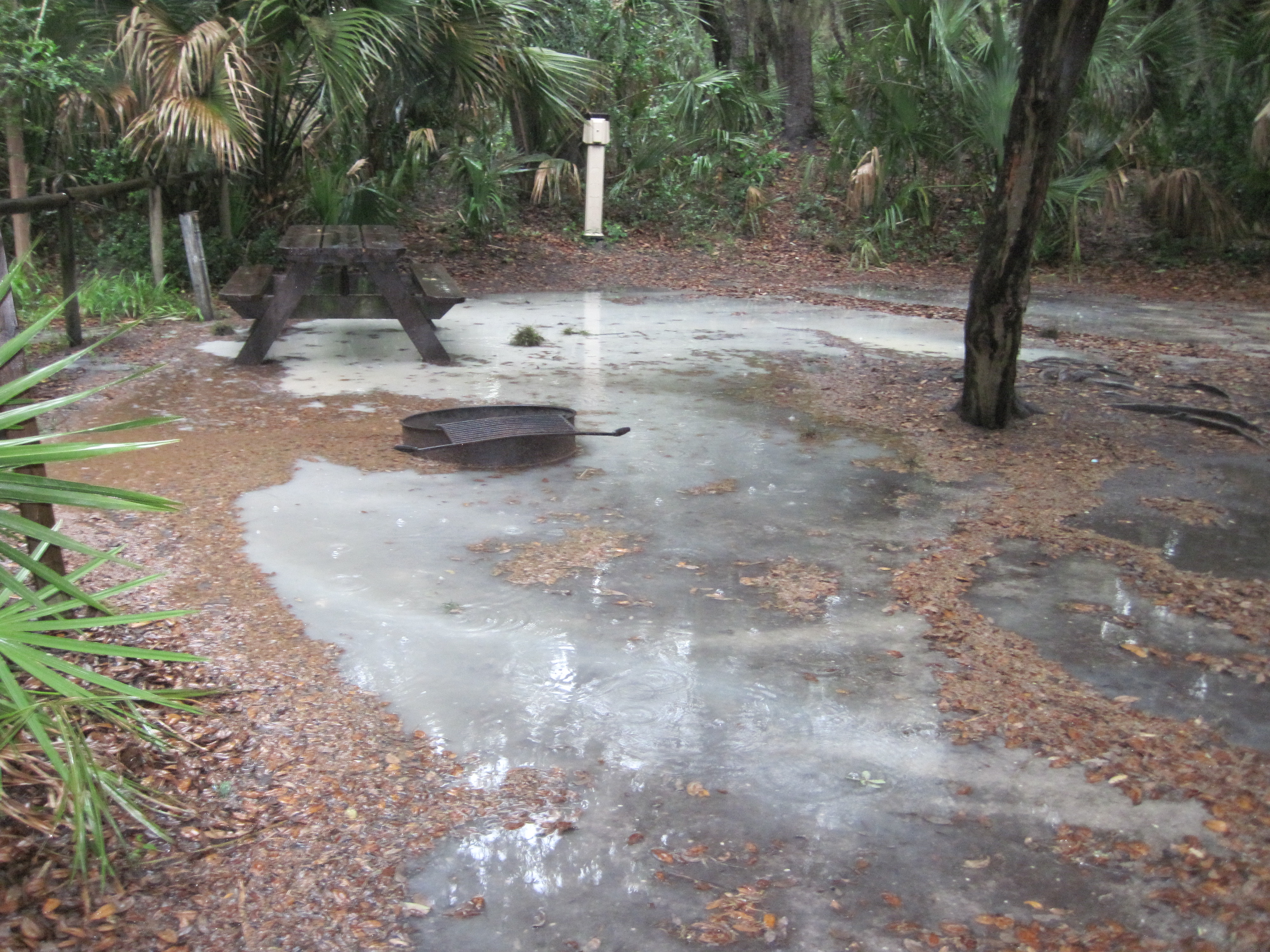 Little Talbot Island State Park Campground Reviews