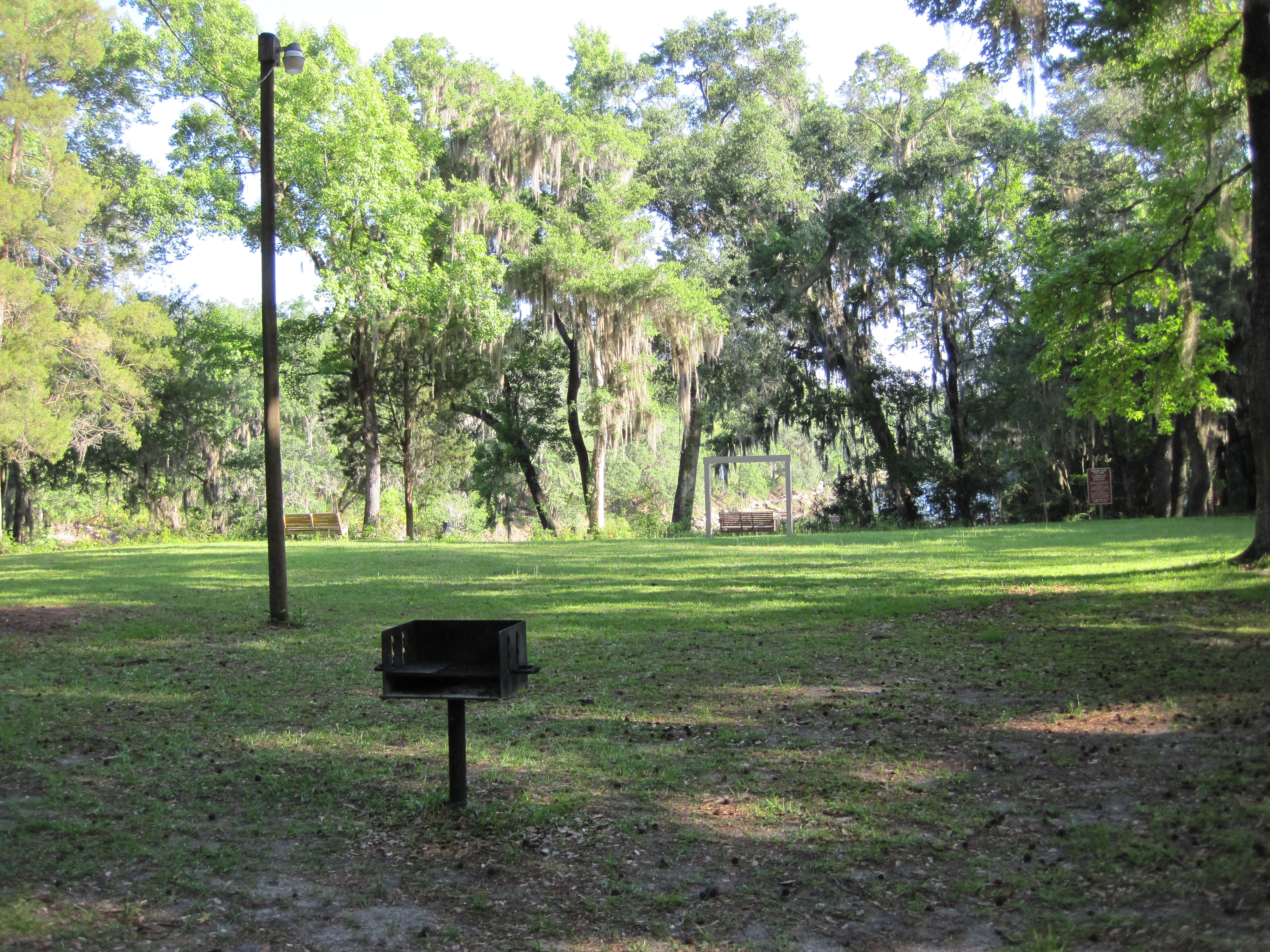 Picnic Area Overlooking The Suwannee River