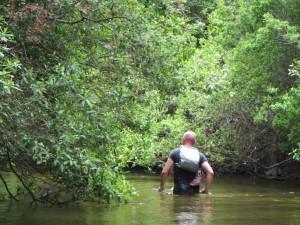A lost hiker wading along Turkey Creek.
