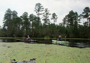 Kayakers paddling on Karick Lake.
