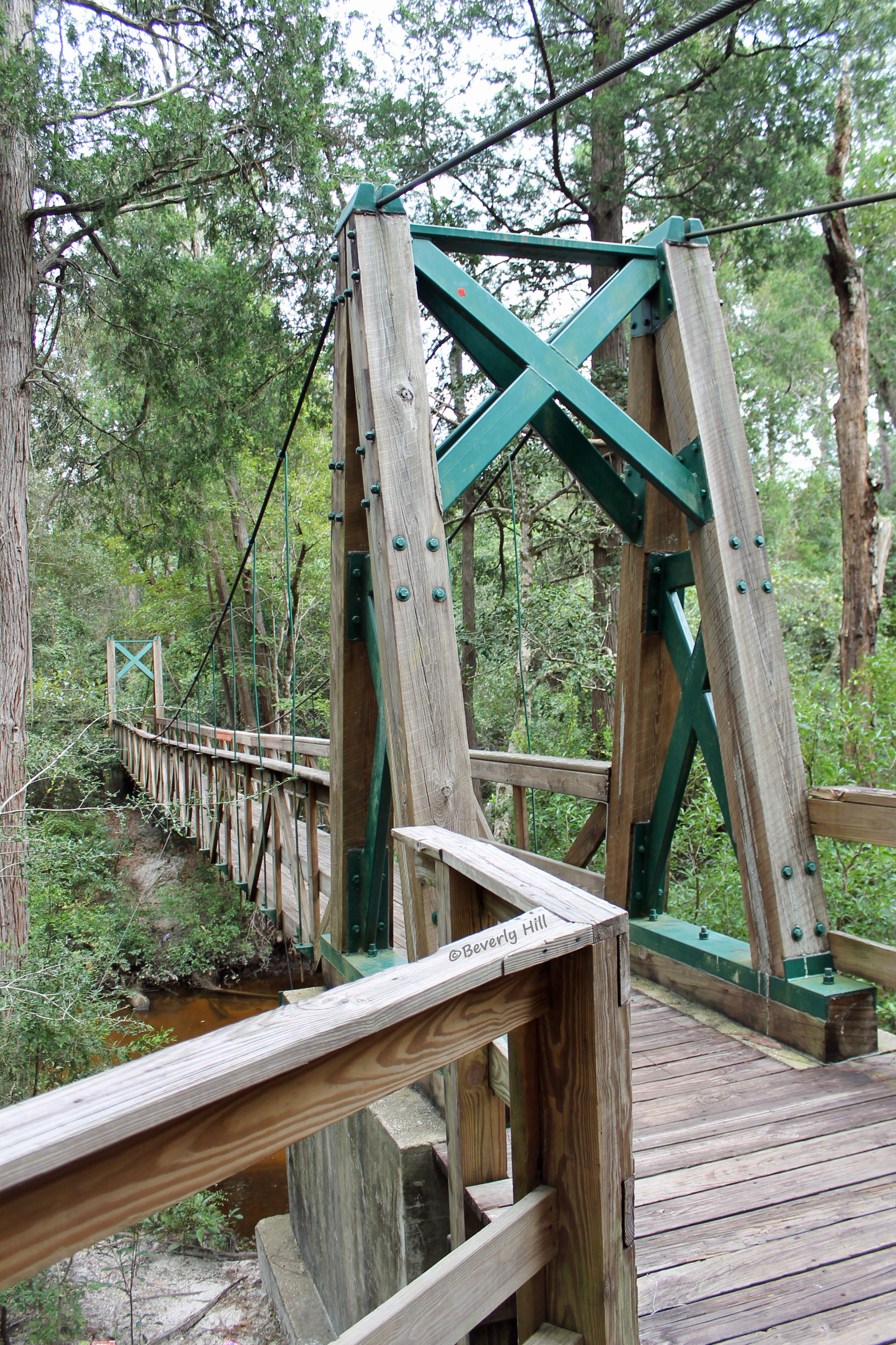 Hiking on the Sweetwater Trail in Blackwater River State