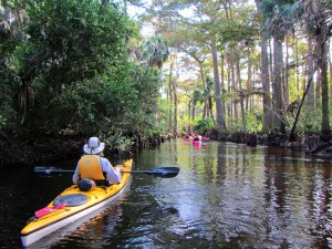 Kayakers float down the Loxahatchee River.