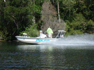 Speeding boat on the Chassahowitzka River