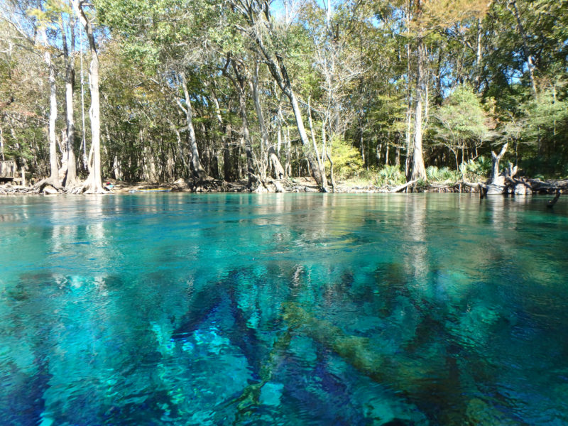 Kayaking Destinations In Northwest Florida Northwest